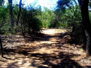 Trail west of Nature Center