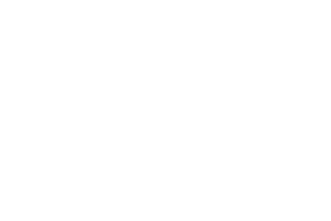Youth Surge 2019 – Web Logo