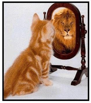Confidence-3