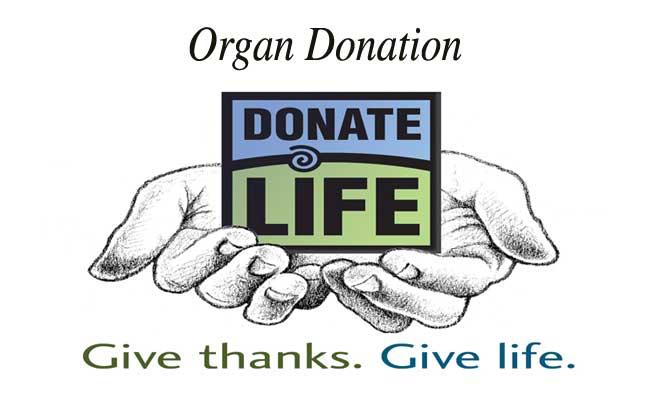 Organ-donor