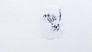 ryapolov-treugolnik (5)