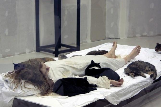 Пир. 2010. Выставки «Живой музей перформанса», ВЦСИ, Воронеж
