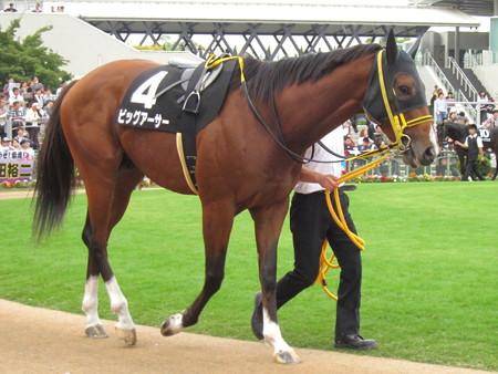 ビッグアーサー 筋肉量が半端なく凄い馬体