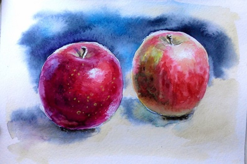яблоки, этюд акварельными красками
