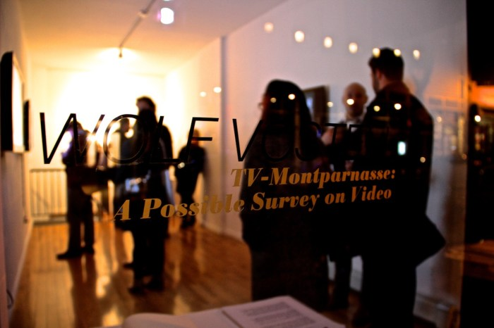 Video Art comes to the LES via Rooster Gallery