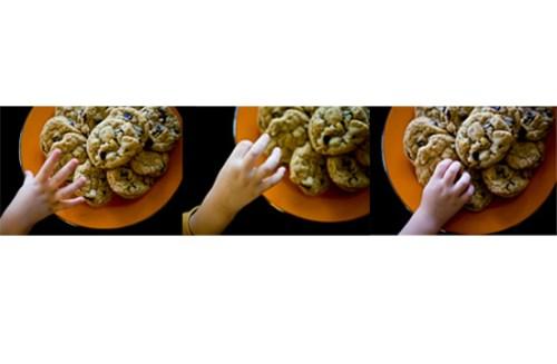 cookiethief1