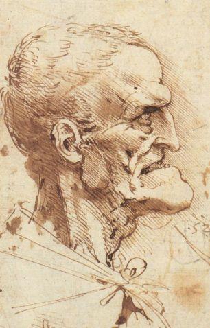 Grotesque Profile, Leonardo Da Vinci