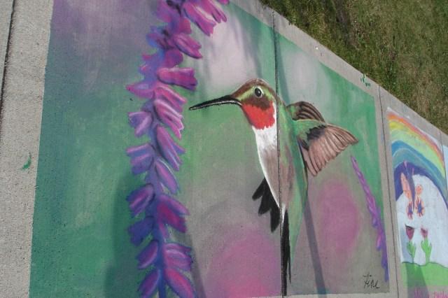 chalk art festival hummingbird by Terra Fine