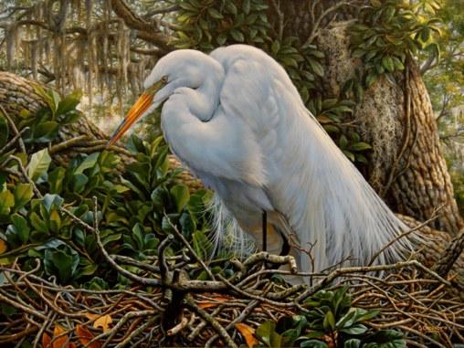 white_egret_1_20121212_1070595190