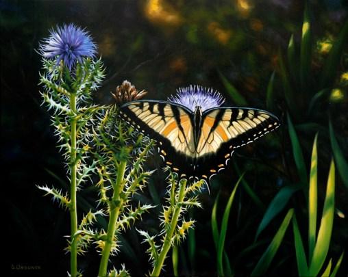 wild_life_20120111_1561816783