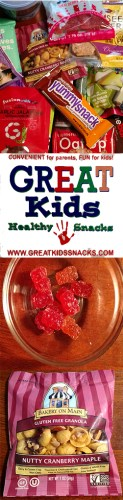 #GreatKidsHealthySnacks #GlutenFree Subscription Box with jerky, Surf Sweets, granola and more