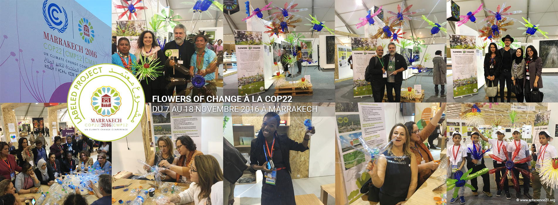 Flowers of Change à la COP22