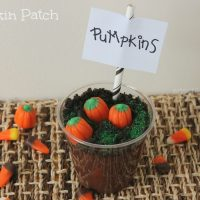 DIY Pumpkin Patch Pudding Cups