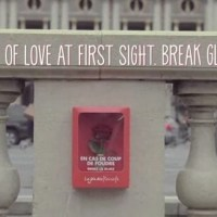 In case of love at first sight break glass: the power of flowers