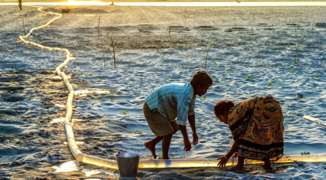 Uttam Kamati wins environmental photographer award for Watering Melon