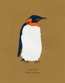 コウテイペンギン-002