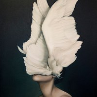 Avian Flesh: Amy Judd