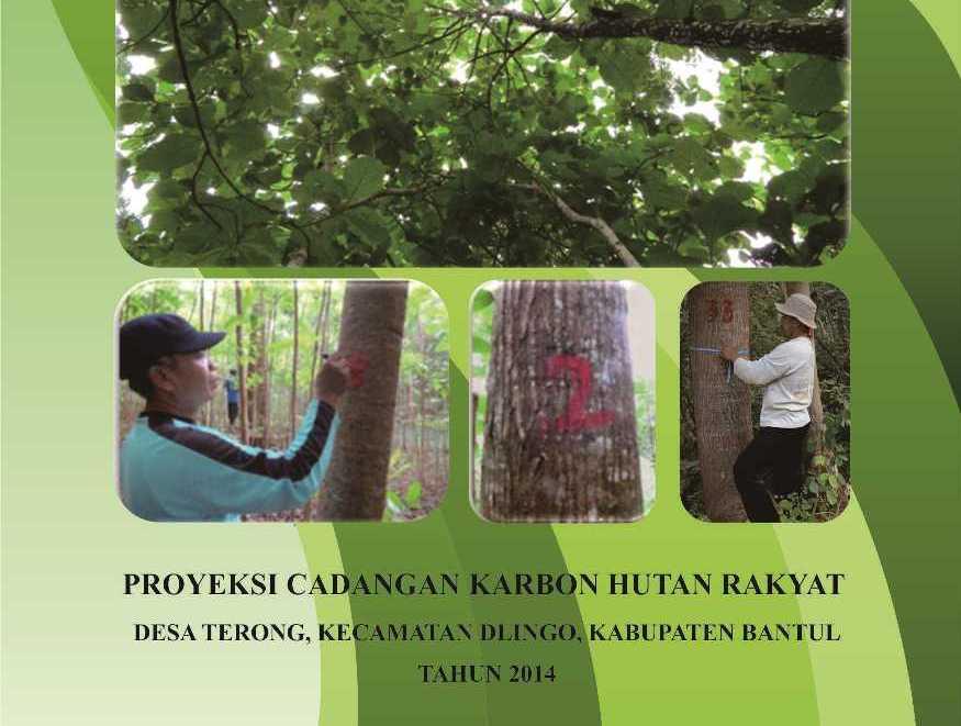 Laporan Penghitungan Karbon di Desa Terong