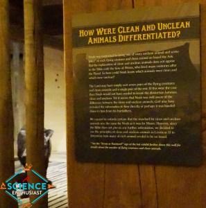Ark Encounter Clean vs Unclean