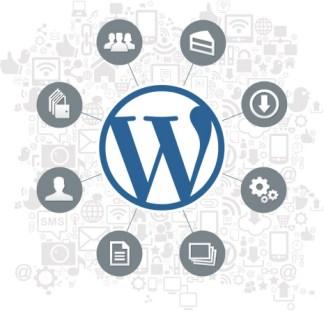 wordpress-graphic