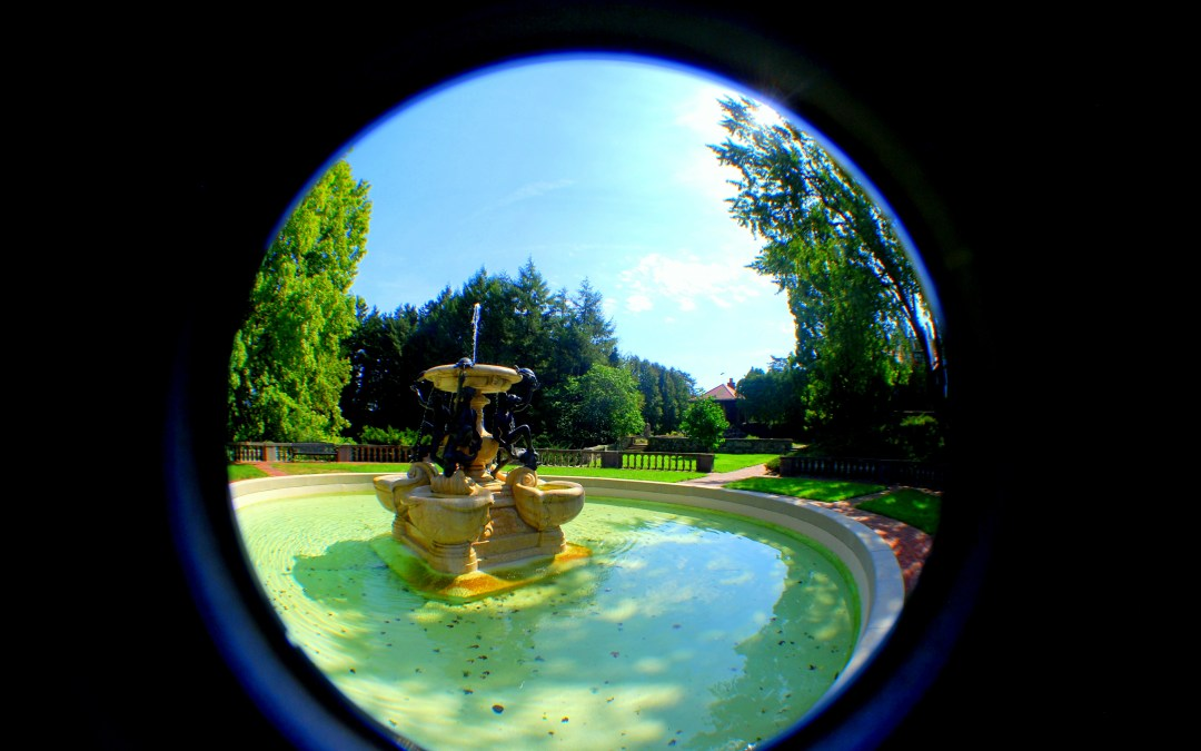 Cranbrook by Fisheye
