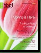Yogi Times - April 2006
