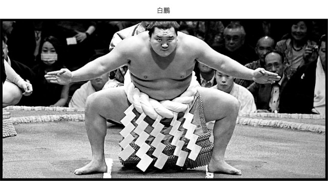 The highest-ranked sumo wrestlers like Hakuho wear the yokozuna rope during dohyo-iri (the ring-entering ceremony).