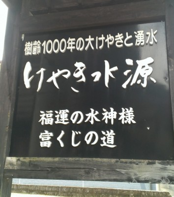 IMAG0752
