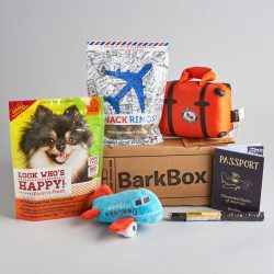 Small Crop Of Barkbox For Cats