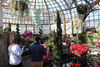 'Spring Rising' Indoors And Out At Conservatory