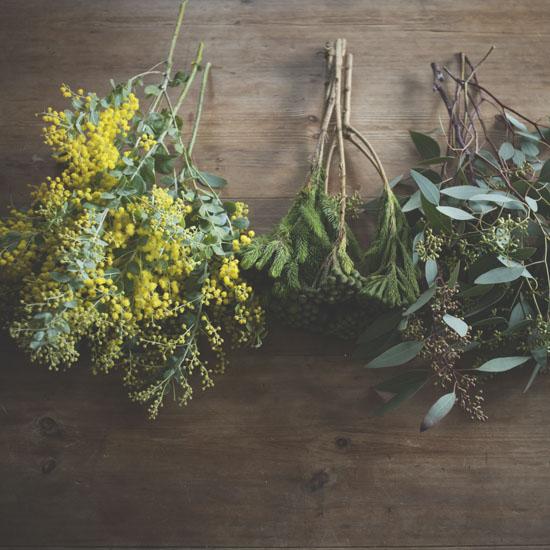 dryflower_057