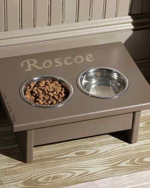Medium Of Dog Feeding Station