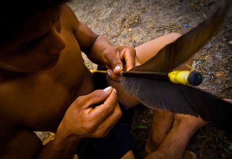 """""""Souvent utilisé avant la chasse, le poison de grenouille permet d'améliorer la précision, la vision et l'énergie."""""""