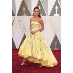 Small Crop Of Oscar Dresses 2016