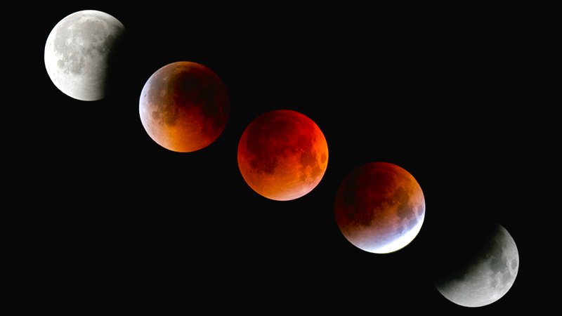 Lunar Eclipse Viewing