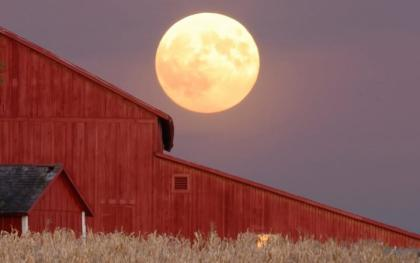 harvest-moon_0
