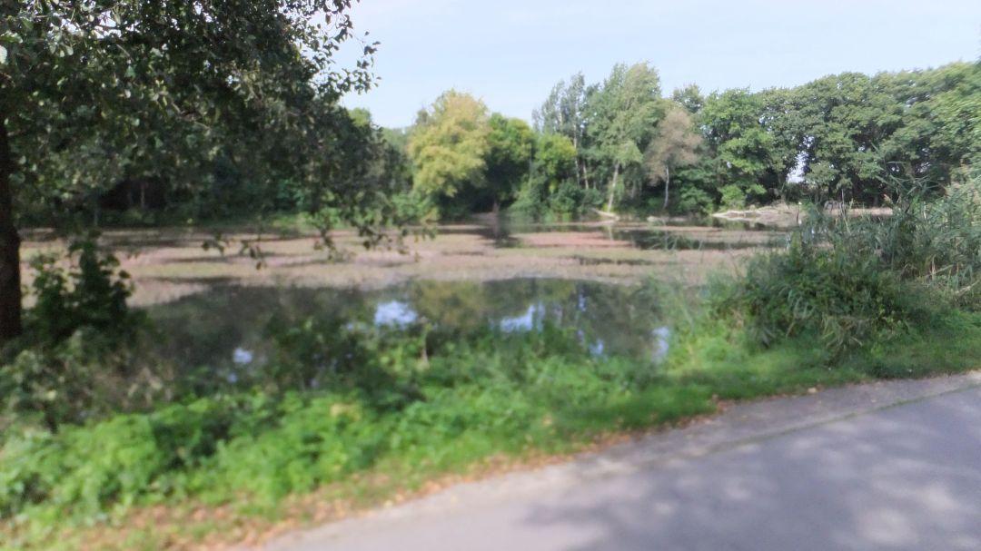 Spree Radweg 2014 - 0 (36)