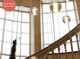 heals-cecil-brewer-staircase-bocci-chandelier-heals-cat