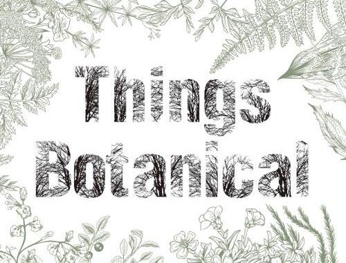 Things Botanical 阪神梅田