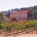 Bethlehem Cremisan IMG_2021_SALSA