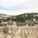 Jerusalem IMG_7655_SALSA
