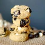 Hazelnut Chai Protein Cookies 3