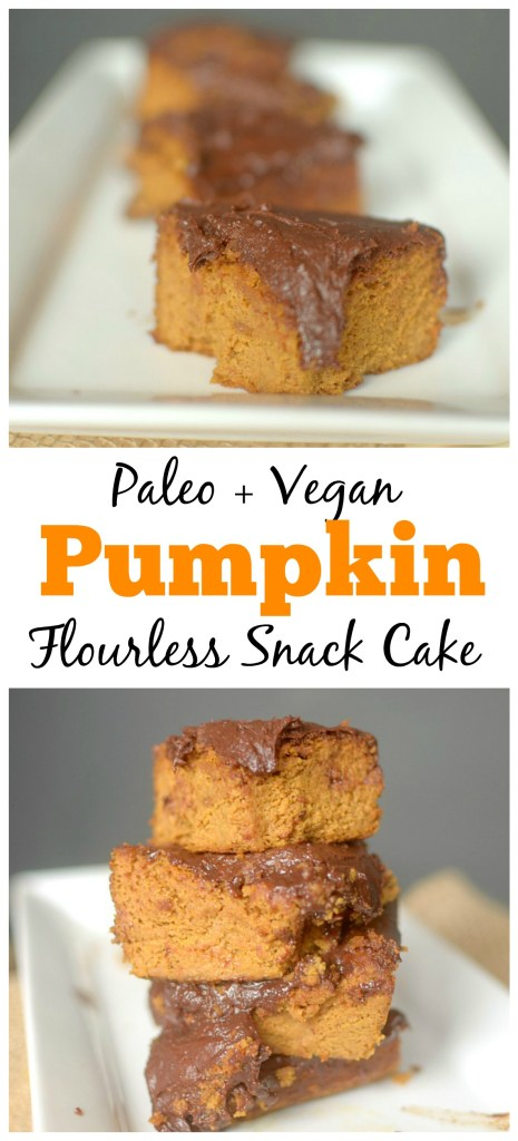 Satisfy your pumpkin cravings w/ this Paleo Pumpkin Snack Cake w/ Dark Chocolate Frosting. You won't believe that it's flourless and only 7 ingredients!