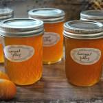 Kumquat Jelly