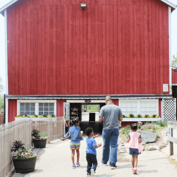 Trip to the Farm - Field Trip - Homeschool - At Home With Zan