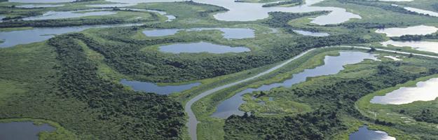 EM-2006-03-Wetlands