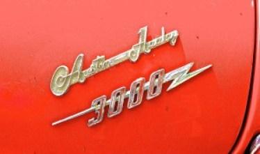 Austin Healey 3000 Mk III in Ausitn TX emblem