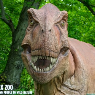 Dinosaurs are Back at the Bronx Zoo!