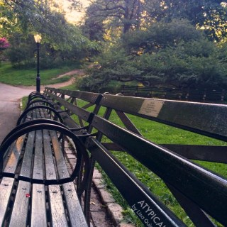 Dedications & Declarations of Love {Adopt-A-Bench Central Park}