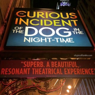 The Curious Incident of the Dog in the Night-time {NYC Broadway Play}